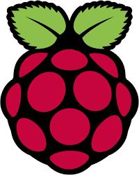Raspberry Pi symbol
